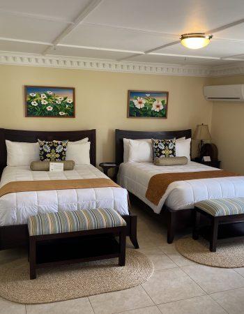 2020 Pesach Villas in Jamaica